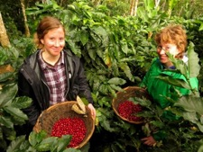 Olivia and Vanessa with the coffee cherries they harvested